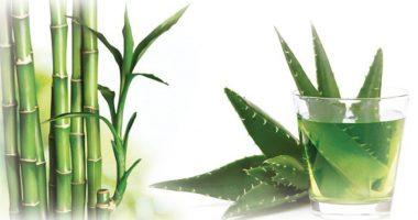 roślinne pokrowce na materace
